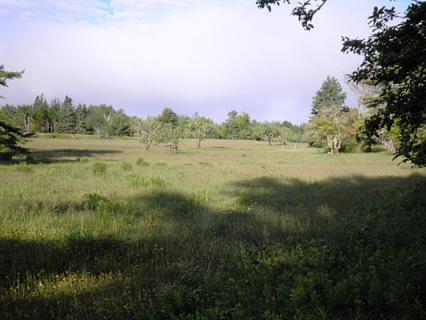Land Trust bordering property, Farmhouse Cottage