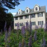 Acadia Dreamscape, vacation house rental, summer, lupine, Maine