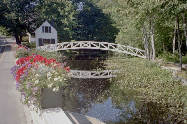 Somesville Bridge, village, flowers, trees, stream