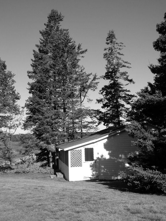 Pine Cottage, black & white scenic, Bass Harbor Cottages and Country Inn