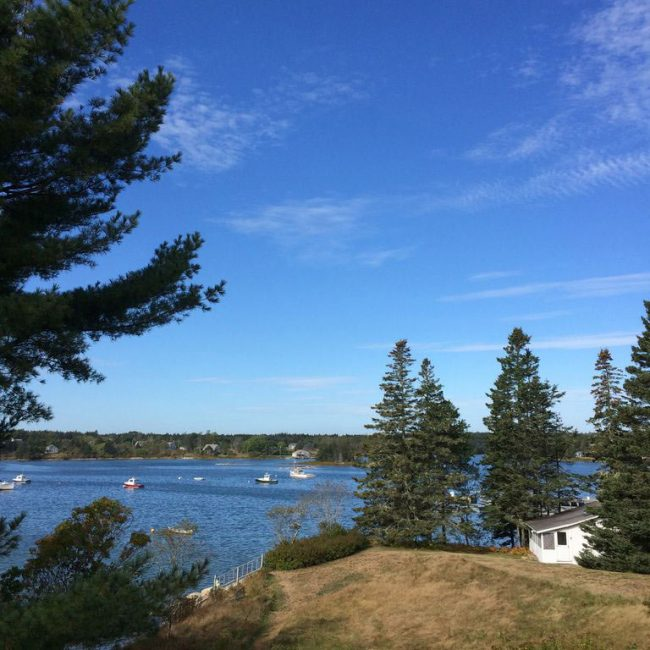 Pine Cottage, Bass Harbor Cottages and Country Inn, oceanfront, trees, vacation rental