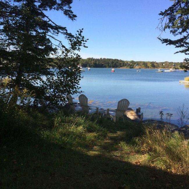 View behind Pine Cottage, Bass Harbor Cottages and Country Inn, oceanfront, trees, vacation rental
