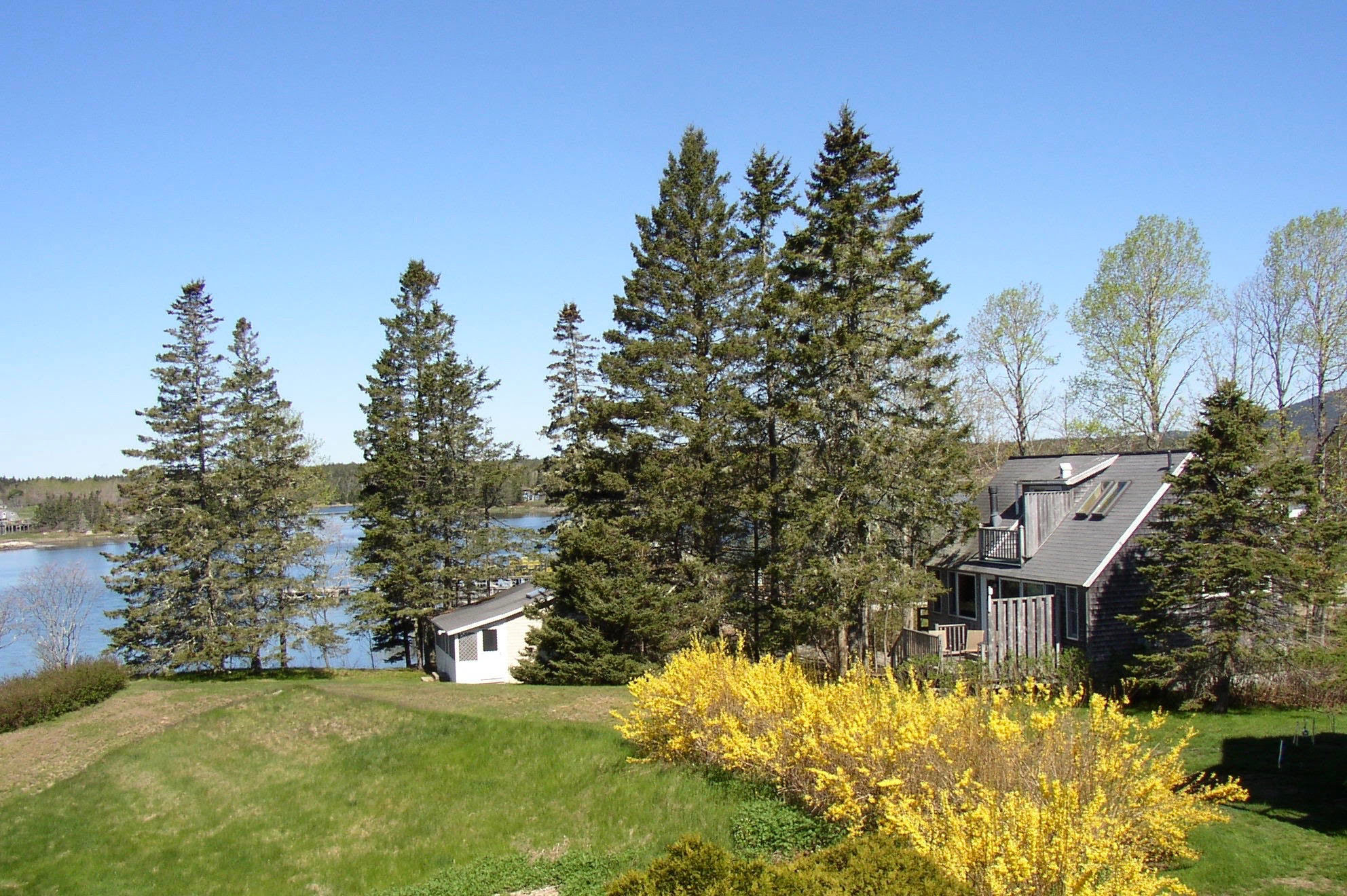 Bass Harbor Cottages and Country Inn, on the water, trees, foliage