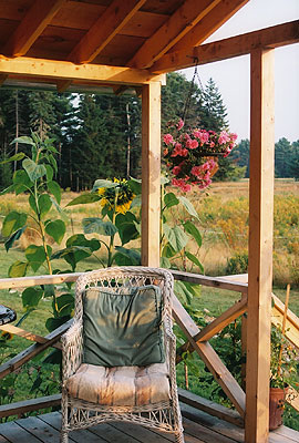 Porch in September, Blueberry