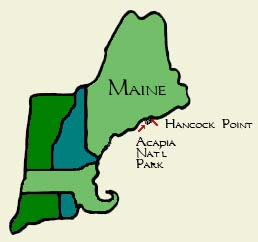 Maine Coast hand-drawn map
