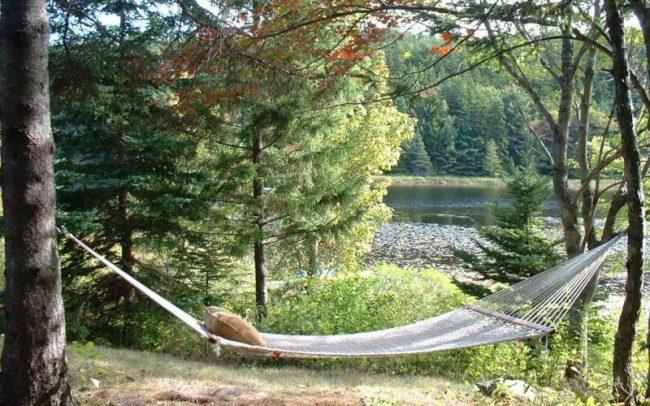 Hammock and pond, Cottage 1