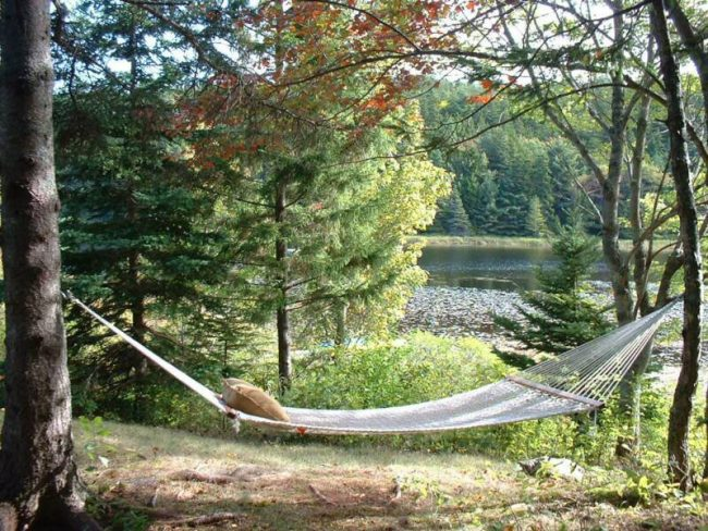 Hammock and pond, Cottage 1