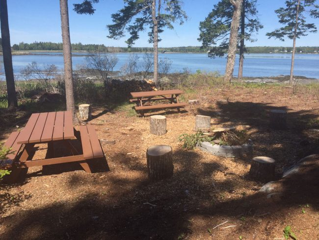 Firepit picnic area