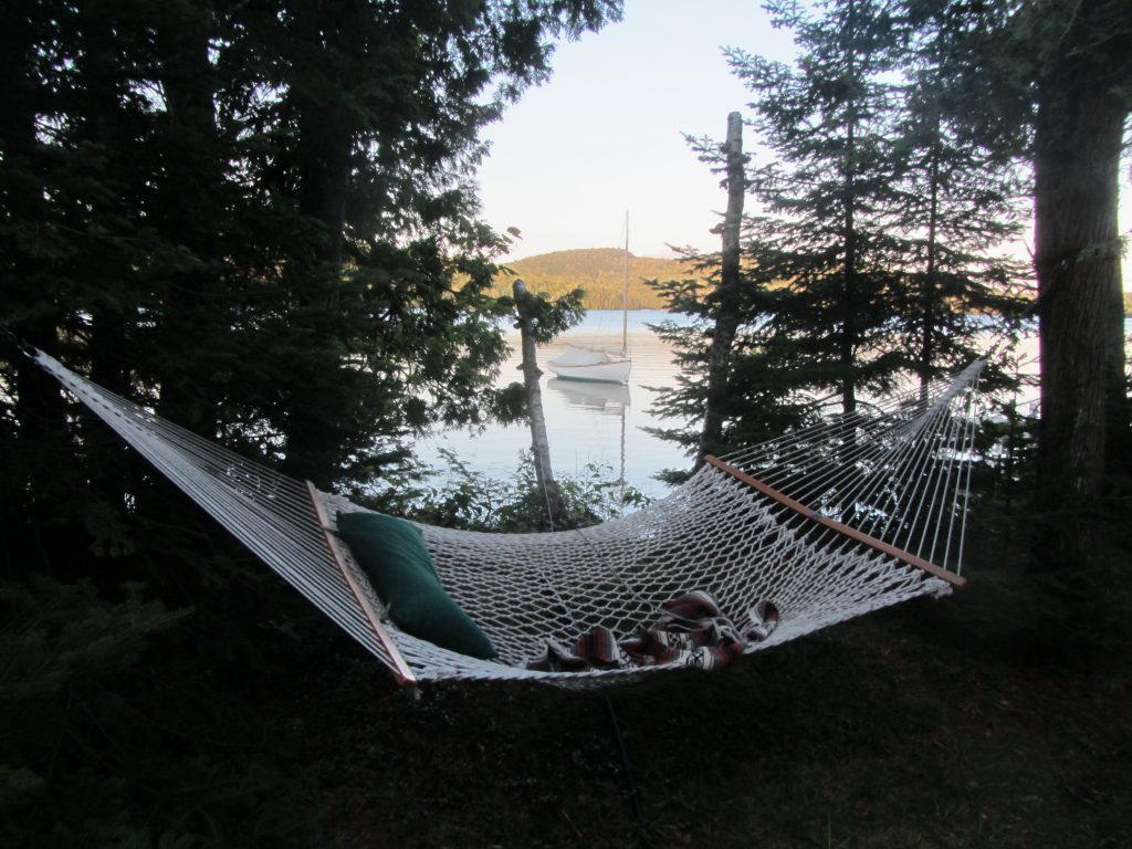 Log Cabin on Davis Pond - hammock